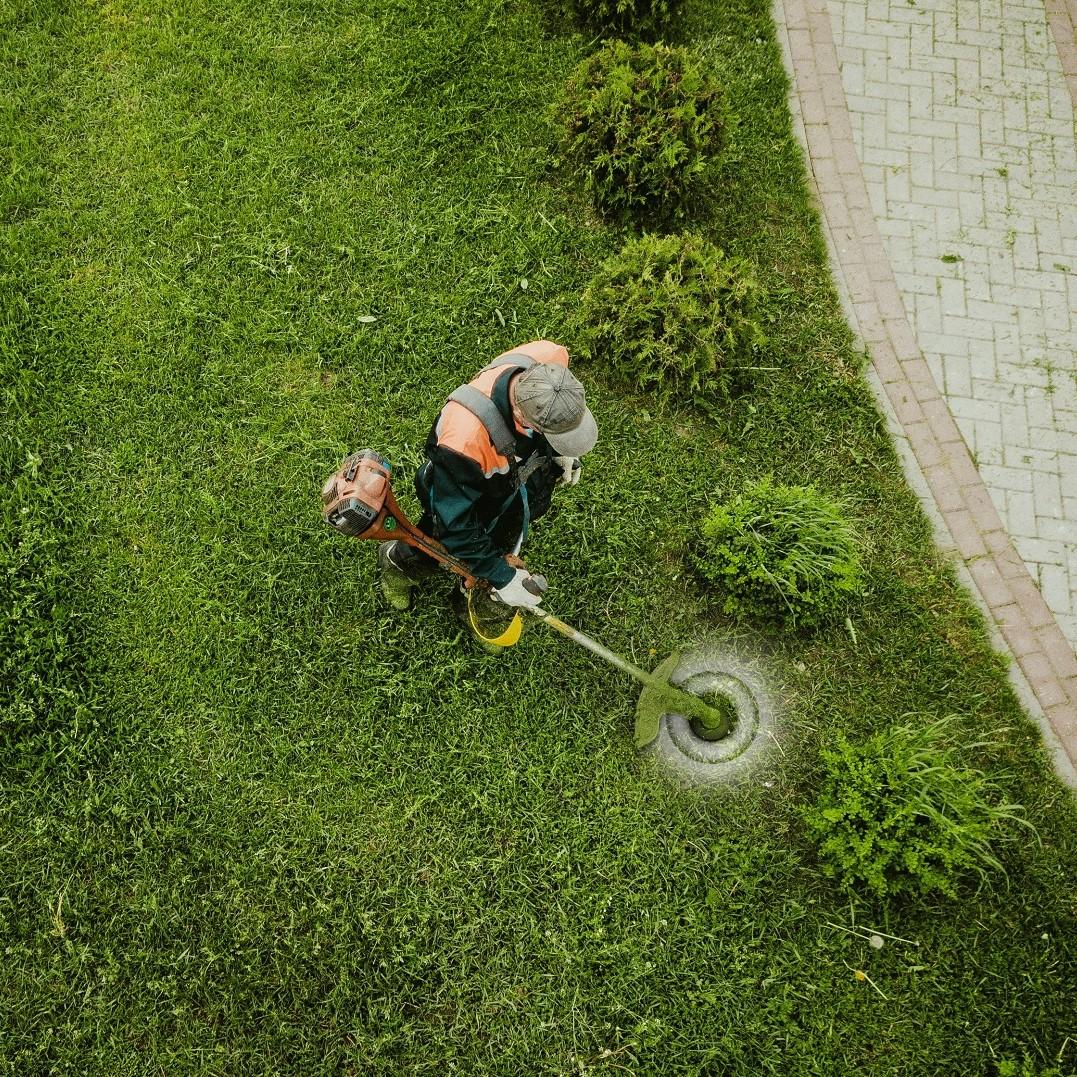 garden_service_kwadrat